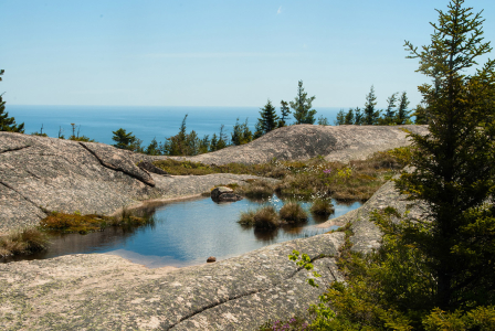2014.06.07 Acadia National Park, Pond, rock pond